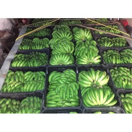 Cambur-pineo-costa- maya pvp cesta (25kg)
